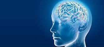 Beyin Sarsıntılarına anında müdahale