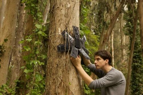 Rainforest Connection ekibinin çalışmasından bir kare