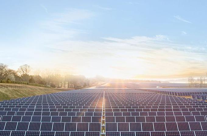 Apple, Güneş enerjisi tarlaları için 40 hektar arazi daha ayırdı